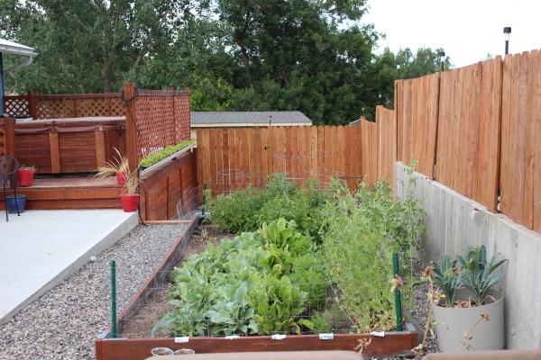 the happy crazy house back patio garden raised garden