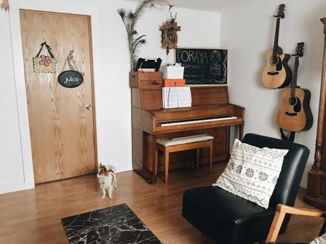 the happy crazy house basement
